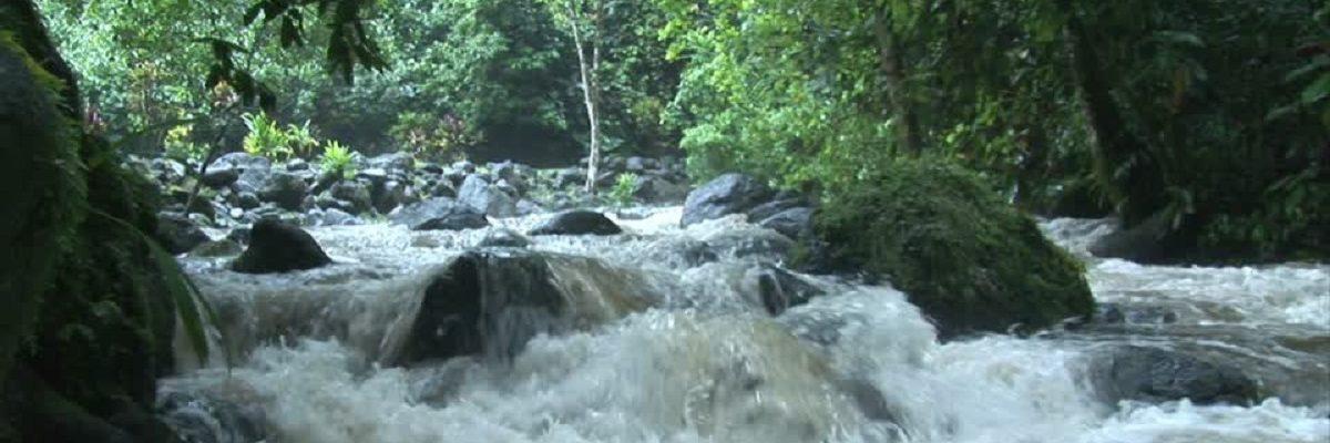 327913180-flooding-procedure-cascade-rapids-climate-change